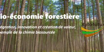 Webinaire Bio-économie forestière : intégration, innovation et création de valeur, l'exemple de la chimie biosourcée
